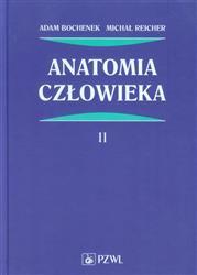 Anatomia człowieka Tom 2  Bochenek Adam, Reicher Michał-70145