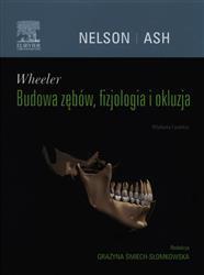 Wheeler Budowa zębów, fizjologia i okluzja  Nelson Stanley J., Śmiech-Słomkowska Grażyna-77776
