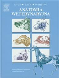 Anatomia weterynaryjna  Dyce K.M., Sack W.O., Wensing C.J.G.-77940