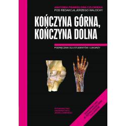 Anatomia prawidłowa SKAWINA - Kończyna górna,...