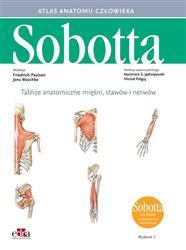 Tablice anatomiczne mięśni, stawów i nerwów. Łacińskie mianownictwo-271981