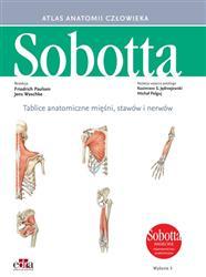 Tablice anatomiczne mięśni, stawów i nerwów. Angielskie mianownictwo-271988